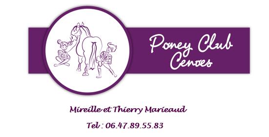 Aidez le Poney-Club